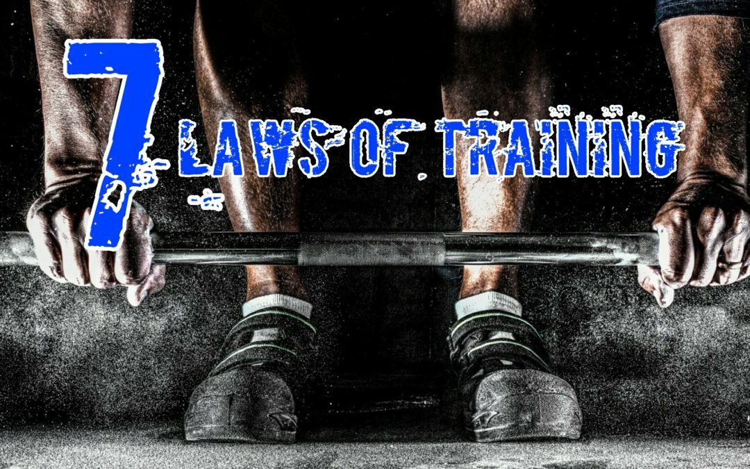 The 7 Laws of Training