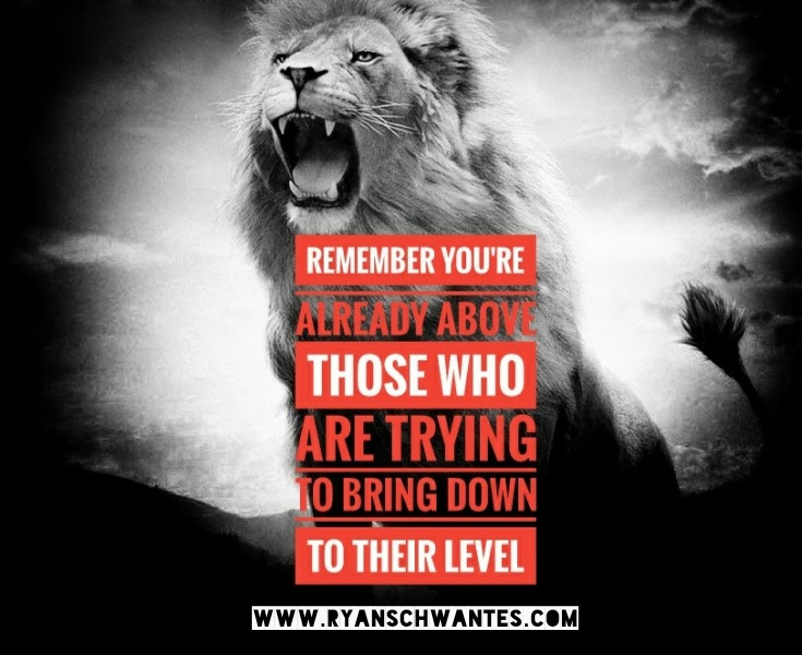 Ryan Schwantes Lion Quote